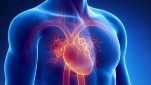 Yapılan araştırmalara göre her yıl yalnızca 610 bin kişi kalp hastalıkları ile ilgili sorunlar yaşıyor. Erken tanı ile kalp rahatsızlıklarından hayati bir risk yaratmadan kurtulmak istiyorsanız kalp hastalıklarını işaret eden sinyaller işinize yarayabilir. İşte kalbinizin düzgün çalışmadığını gösteren 8 yaygın işaret…