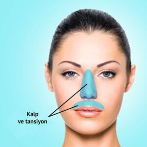 Kaş arasıdna görülen akneler karaciğer sorunlarına bağlı olabilir. Bölge 6. Burun ve üst dudak kenarları
