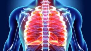 """YOGA VE PİLATES Göğüs Hastalıkları Uzmanı Dr. Zekai Tarım """"Yoga ve pilates gibi egzersizlerin diyaframı çalıştırarak akciğer kapasitesini arttırıcı, solunum kaslarını güçlendirici etkileri olduğu saptanmıştır. Yoga egzersizlerinin bir diğer faydası otonom sinir sistemindeki sempatik sinir sistemi etkilerini baskılamasıdır. Bu şekilde hem hava yolları kullanımı daha iyi hale gelir, hem de stresle mücadele güçlenerek bağışıklık sistemi"""