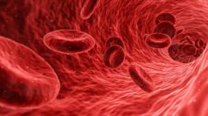 """Kan sulandırıcı kullanan hastalarda beyin kanamalarının daha ağır seyredebileceğine dikkat çeken Arlıer, """"Kan sulandırıcı kullanan hastalarda beyne yavaş yavaş sızıntı olup bazen 1 yıl sonra bile çok büyük, beyne baskı yapan, komaya sokan durumlar oluşabilir, ölümcül netice verebilir"""" dedi."""