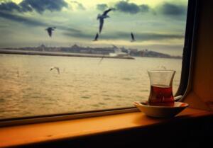 YANLIŞ DEMLEME SAĞLIK SORUNLARINA DAVETİYE ÇIKARTIYOR Türk mutfağının geleneksel içecekleri arasında çay çok önemli bir yere sahip. Bitki çayları her ne kadar sağlığımız için çok yararlı olsa da çayın yeri ve önemi her zaman farklıdır.