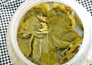 Asma yaprağı Asma yaprağı, damar sağlığı için kullanılan flavonoidler barındırmaktadır. Bir tutam üzüm yaprağını 4 bardak suda kaynatın, soğumasını bekleyin suyunu da kullanabilirsiniz, asma yaprağını varisli damarlar üzerine yerleştirin. Üzüm yaprağı büzücü, anti-inflamatuar, antioksidan ve varis tedavisinde homeostatik özelliklere sahiptir.