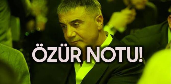 Sedat Peker, Defne Samyeli'nin sert tepkisinin ardından özür diledi