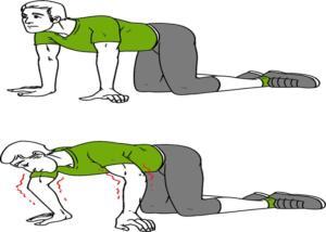 4.Vücudunuzu Titretin Dizlerinizin üzerinden dört ayak pozisyonu alın. Sırtınızı gevşetin. Kollarınızı dirseklere doğru hızlı ve keskin şekilde bükerek sallamaya başlayın. Bu işlemi 10 kez tekrarlayın.