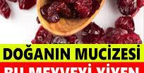 Bu meyveyi yiyen antibiyotik kullanmıyor! Bağışıklık sistemini güçlendiriyor (Turna yemişi nedir?)