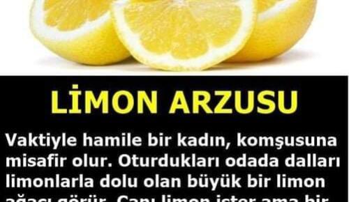 "İBRETLİK Dini Hikayeler; ""Limon Arzusu"""