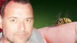 İstanbul'da şans oyunu bayisi işleten 1 çocuk babası Vural Şenalp iş gezisi için Karadağ'a gitti. Arkadaşıyla birlikte deniz kenarında bir restorana oturan Şenalp sipariş ettiği içecekten içti. Şenalp, yudumladığı içecekteki arının boğazından sokmasıyla hayatını kaybetti.
