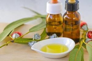 Akciğerler ve solunum sistemi sağlığı denince, okaliptüs bu konuda en meşhur bitkilerden biridir. Aslen Avustralya'dan gelen bu bitki, akciğer durumundan kaynaklanan tahriş ve iltihapları sakinleştirmek için bilinen en eski tedavilerden biridir.