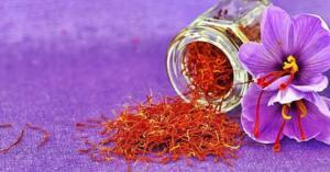 Saray Sofralarının Mücevher Baharatı Safran Dünyanın en pahalı baharatlarından biri olan safranın ana vatanı Güneybatı Asya'dır. İran, İtalya, Fransa ve İspanya'da da yetiştirilen safran özellikle kimya ve ilaç sanayinde kullanılır. Kendine özgü safran rengi ve keskin kokusundan dolayı kumaş boyası ve parfüm üretiminde de yer alır. Sıra dışı bir aromaya sahip olan bitki özellikle Arap mutfağında yaygındır. Anadolu'da genel olarak ilaç olarak kullanılan safran günümüzde Hint, İran, Avrupa, Fas ve Orta Asya yemeklerinde favori bir baharattır.
