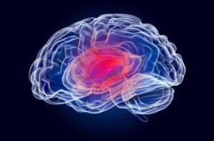 Birçok beyin tümörü türü bulunur. Bazıları kötü huylu tanımlanırken bazıları iyi huylu olarak belirlenir. Bazı kötü huylu tümörler, ilk olarak beyinde oluşmaya başlar ve bu tür tümörler, birincil beyin kanseri olarak adlandırılır. Fakat bazen kanser vücudun başka bölümünde gelişme gösterirken beyne yayılır ve bu tip tümörlere ise ikincil beyin tümörü adı verilir.