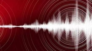 """Afet ve Acil Durum Yönetimi Başkanlığının internet sitesinde yer alan bilgiye göre, deprem, saat 19.09'da ve 14,34 kilometre derinlikte gerçekleşti. AFAD'dan yapılan açıklamada, """"Tokat'ın Niksar ilçesinde saat 19.09'da 4,3 büyüklüğünde bir deprem meydana geldi. Gelişmeleri takip ediyoruz."""" ifadelerine yer verildi."""
