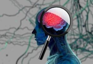 ZAYIFLIK VE UYUŞUKLUK Vücudunuz tümörle savaştığı için bir zayıflık hissi olabilir. Bazı beyin tümörleri el ve ayaklarda uyuşma veya karıncalanmaya neden olur. Bu durum, vücudun yalnızca bir tarafında olma eğilimindedir ve beynin belirli bölümlerinde bir tümörü gösterebilir.