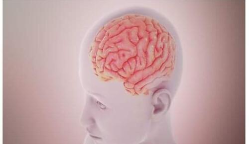 Bu belirtiye dikkat! Beyin tümörü vücutta böyle sinyal veriyor