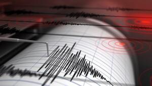 Afet ve Acil Durum Yönetimi Başkanlığı (AFAD) Kaklık'taki sarsıntıyı 3,9 büyüklüğünde olarak açıkladı. Depremin yerin 6,99 kilometre derinliğinde gerçekleştiği bildirildi. Yaşanan depremlerde herhangi bir can ve mal kaybı oluşmadı.