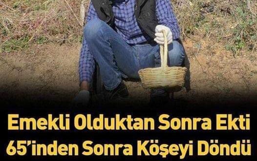 Emekli olup bu işe girdi artık paraya para demiyor! Talebe yetişemiyor Kilosu 50.000 TL olarak satılıyor!