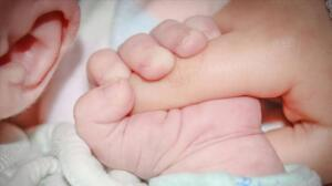 Hollandalı bilim insanlarının yaptıkları bir çalışmada, anne sütünde korona virüsü engelleyebilecek miktarda antikor buldukları bildirilmiştir. Bu çalışmada Covid-19 geçirmiş annelerin kanında ona karşı antikor varsa bebeğine de bu antikorları geçirdiği tespit edilmiştir. Bu durum anne sütünün doğal bir özelliğidir. Bu antikorlar bebeği bir süre korur.