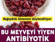 Bu meyveyi yiyen antibiyotik kullanmıyor! (Turna yemişi nedir?)