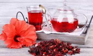 Hibiskus Çayı Nasıl Hazırlanır? Kaynamakta olan 1 su bardağı su içerisine 1 çorba kaşığı hibiskus atılır ve 3 dakika kadar kaynatılır. 3 dakikanın sonunda ocak kapatılır ve ılınmaya bırakılır. Ilındıktan sonra süzülür ve ılık olarak yudum yudum içilir. Hibiskus çayı kürünü akciğer kanseri olan hastalar 10 gün, Wilson hastaları ise 15 gün kullanmalıdır. Her defasında taze hazırlanmalıdır.