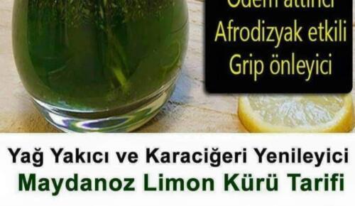 İbrahim Saraçoğlu Maydonoz Limon Kürü